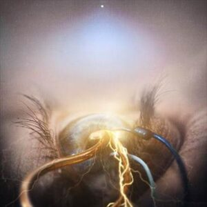 The Agonist cover1